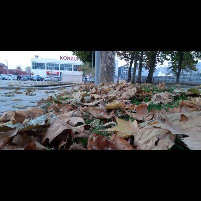jesen_kiseljak